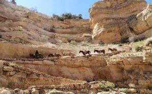 Gagnant Gabriel-Grand Canyon - South Kaibab Trail