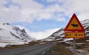 Islande2W