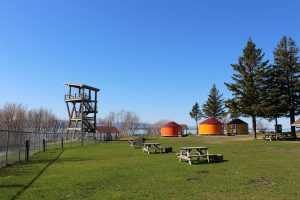 Yourtes-Camping-Pointe-aux-Oies