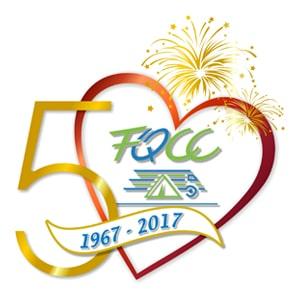 logo50e.2